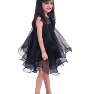 Organza Wired Dress